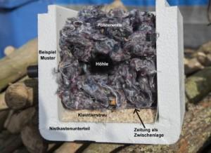 Mustereinrichtung des Nestraumes