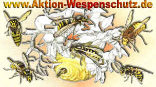 partner-aktion-wespenschutz